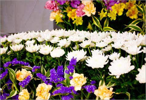 公営斎場相談センターの家族葬ファミリーワイドプランイメージ
